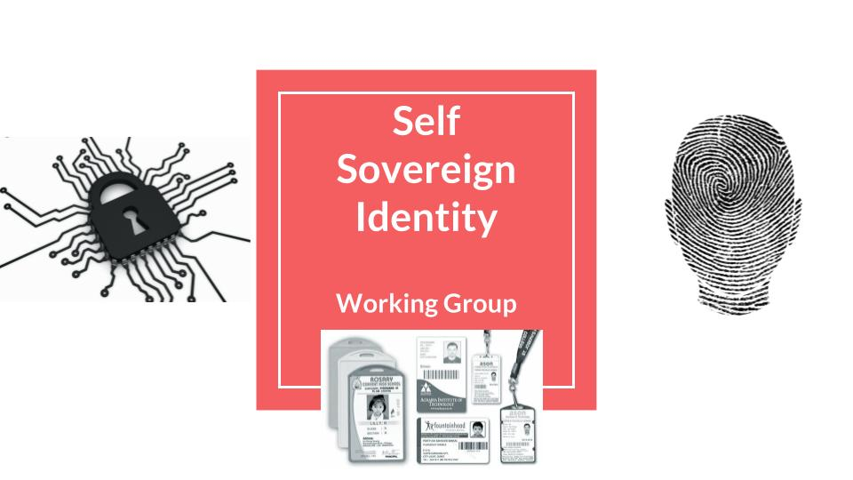 Self Sovereign Identity Working Group BlockchainHub